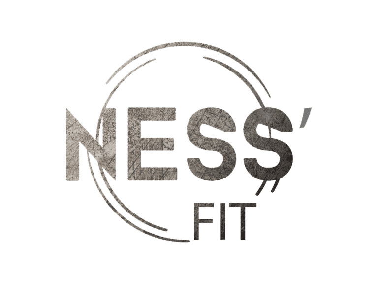Ness-Fit logo