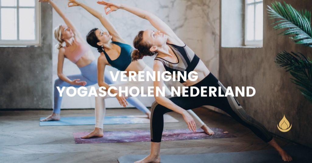 Vereniging yogascholen Nederland