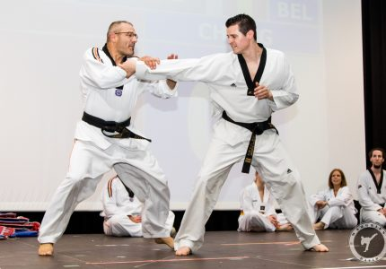 Taekwondo Sonbae